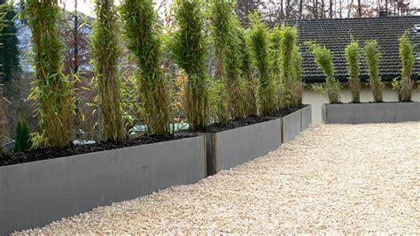 Garten Bepflanzung Sichtschutz  Nowaday Garden
