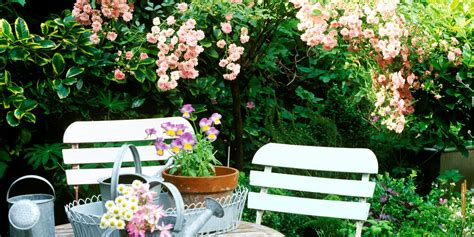small gardens 7 golden rules to give your space the wow