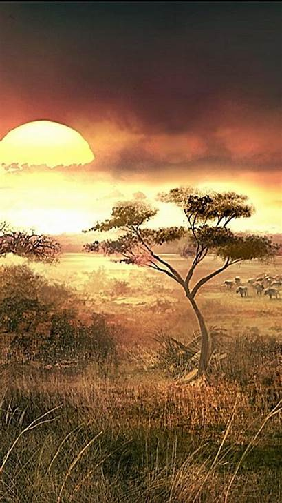 Africa African Sunset Landscapes Nature Iphone Mobile