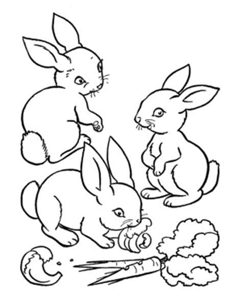 conejo  colorear pintar  imprimir