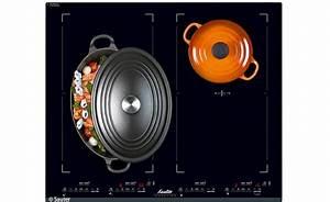 Plaque Induction Modulable : 5 la plaque induction sauter modulable loisir ~ Premium-room.com Idées de Décoration