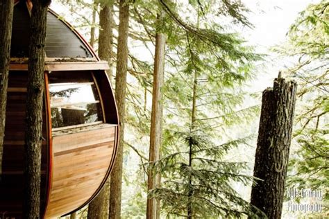 Hidden Egg Treehouse By Joel Allen : Secret Hemloft Treehouse In Canadian Woods