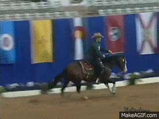 disciplines  theme songs horse nation