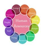 human resources clipart human resources stock photo images 12 544 human resources