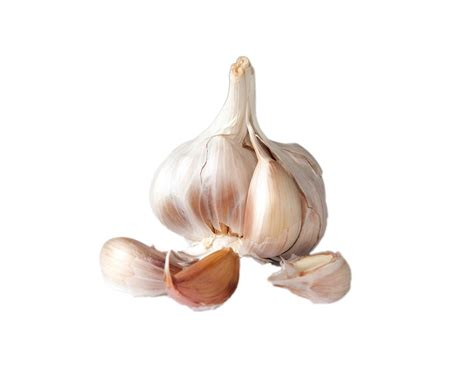 clove garlic free photo garlic bulb clove cloves skin free image