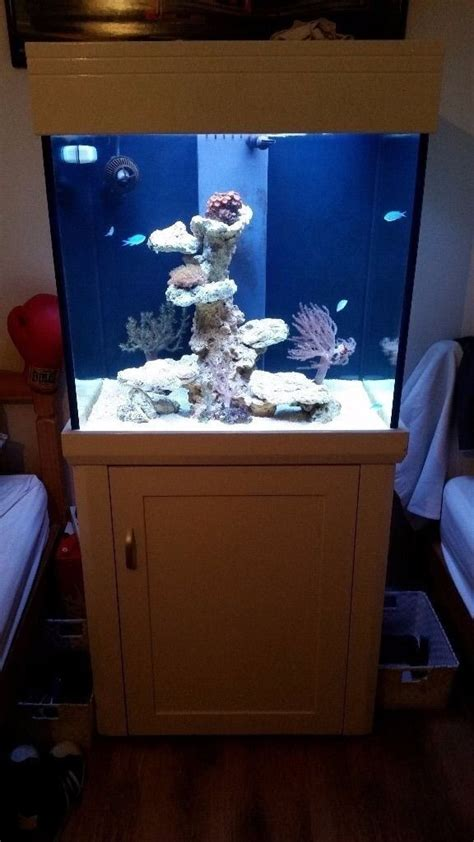 Aquascape Tank For Sale by Aqua One Cube 195l Marine Tank And Aquascape Rock For Sale