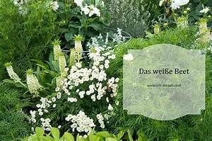 Was Passt Zu Rosen : farbe im staudenbeet was passt zu was farbkombinationen ~ Lizthompson.info Haus und Dekorationen
