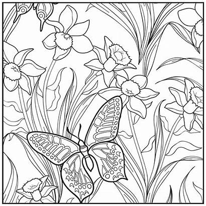 Coloring Pages Adult Garden Sunset Beach Butterfly