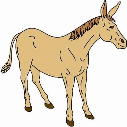 Mule Clipart Clip Donkey Mascot Basketball Funny