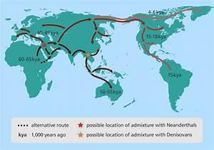 Neanderthal asian european genome racism