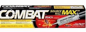 12 Best Roach Killers: Die, Horrible Creatures!
