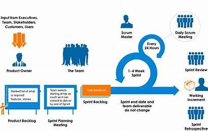 Scrum Process Works Why Agile Sprint Methodology