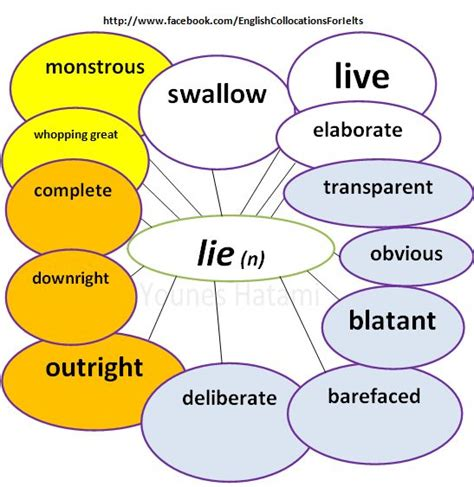 collocations   noun lie  images english