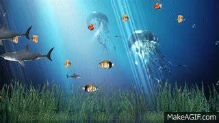 Animated Aquarium Wallpaper Gif - coral reef aquarium animated wallpaper http www