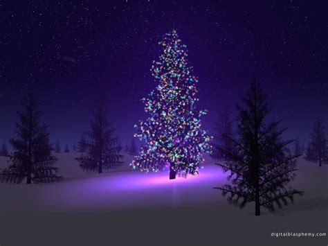 northern lights trading co christmas eve