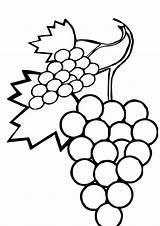 Grapes Coloring Grape Pages Leaves Wine Drawing Sweet Printable Lovely Worksheets Last Leaf Getdrawings Parentune Drawings Draw Preschool Books 230px sketch template
