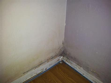 probleme humidité chambre probème humidité mur chambre