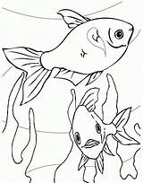 Trout Coloring Rainbow Pages sketch template
