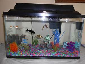 14 best aquarium furniture idea to design your home With fish tank designs for home