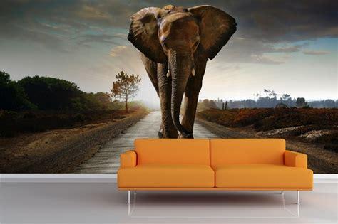 elephant mural wallpaper   wall pinterest