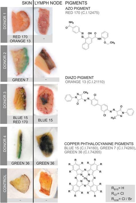 tattoo ink  stain  lymph nodes smart news