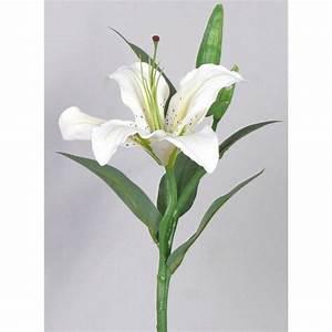 Lilie Topfpflanze Kaufen : wei e tigerlilie kunstblume premium lilie mit kurzen stiel ~ Lizthompson.info Haus und Dekorationen