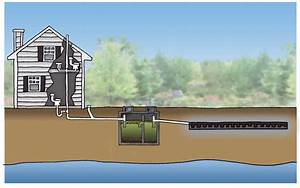 Septic Tanks  What You Need To Know