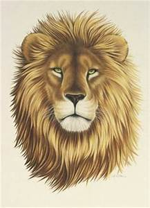 1000+ images about tattoos on Pinterest | Tribal Lion ...