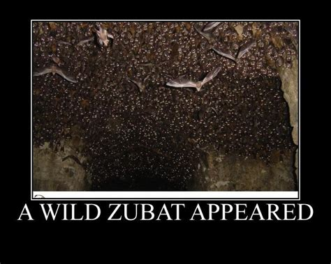Zubat Meme - a wild zubat appeared pok 233 mon know your meme
