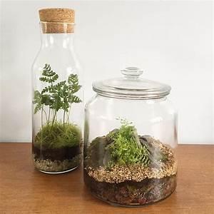 Terrarium Plante Deco : cr ez et fabriquez votre terrarium de plantes jardin ~ Dode.kayakingforconservation.com Idées de Décoration