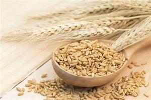 Barley  The Lowest Glycemic Grain