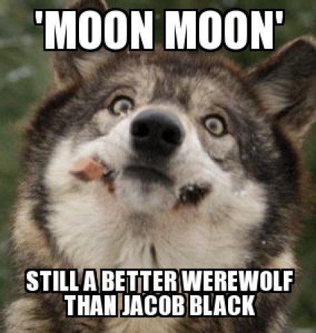 Moon Moon Meme - moon moon meme meme moon and wolf