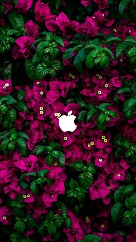 wallpaper android keren hd    apple iphone