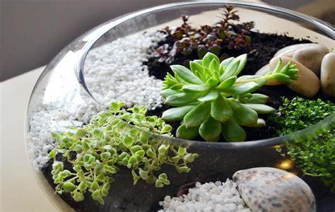 Indoor Garden Ideas For Home & Office