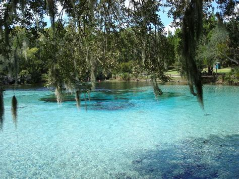 silver springs florida   beautiful place   water