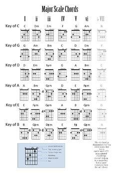major scale chords poster guitar  steves  room tpt