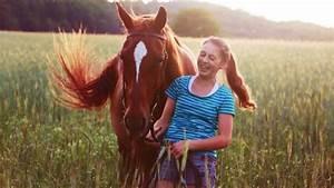 Grundstück Kaufen Was Ist Zu Beachten : pferde kaufen was ist zu beachten haustiermagazin ~ Markanthonyermac.com Haus und Dekorationen