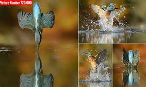 photographer alan mcfadyen takes perfect picture