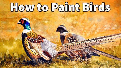 How To Paint Birds In Watercolor Pheasants Time Lapse