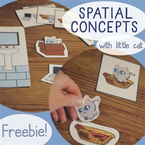 spatial concepts prepositions freebie from cat says meow 285 | ef6bb7680e1cbffbd0b4658f22803661