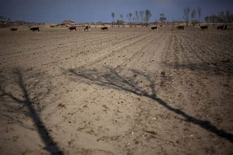 desertification   mongolia china  pictures