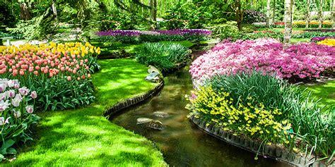 Garten Im Frühling  Frühlingsblüher Gartenkalender