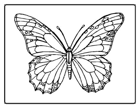 Cute Printable Butterfly Colouring Pages For Kids
