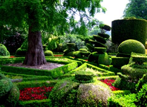 beautiful garden trees amazing beautiful gardens with colorful flowers and trees goodhomez com
