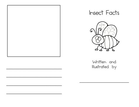 bugs and insects kindergarten nana 407   insect facts 1