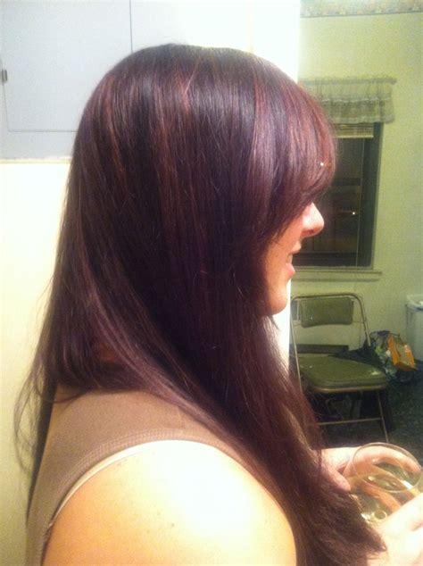 plum highlights  medium brown hair hair art