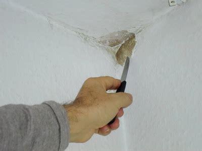 schimmel entfernen wand tipps vom schimmelgutachter
