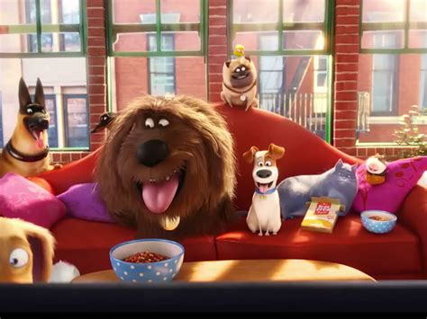 The secret life of pets 2016 movie ● watch streaming full hd visit now at : WATCH: Take an Exclusive Look Inside The Secret Life of ...