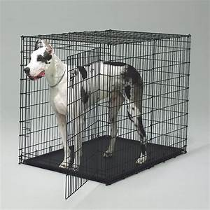 designer dog crates things you know about the dog crates With oversized dog crate