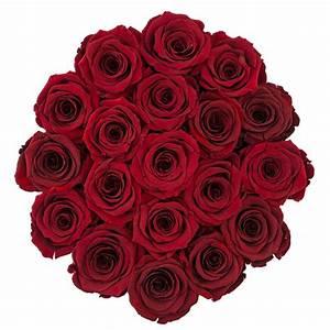 Ewige Rosen Box : rote ewige rosen in wei er rosenbox large ewige rosen rosen produkte online blumenladen ~ Eleganceandgraceweddings.com Haus und Dekorationen